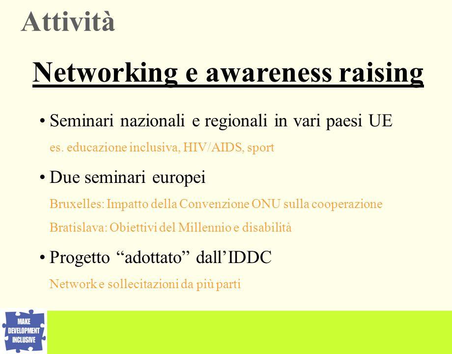 Seminari nazionali e regionali in vari paesi UE es. educazione inclusiva, HIV/AIDS, sport Due seminari europei Bruxelles: Impatto della Convenzione ON