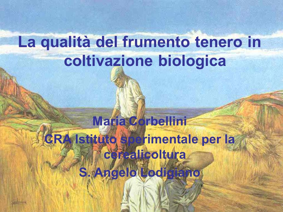 La qualità del frumento tenero in coltivazione biologica Maria Corbellini CRA Istituto sperimentale per la cerealicoltura S. Angelo Lodigiano