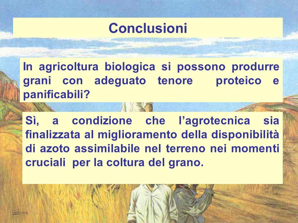 Conclusioni In agricoltura biologica si possono produrre grani con adeguato tenore proteico e panificabili? Sì, a condizione che lagrotecnica sia fina
