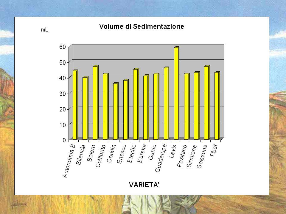 Conclusioni In agricoltura biologica si possono produrre grani con adeguato tenore proteico e panificabili.