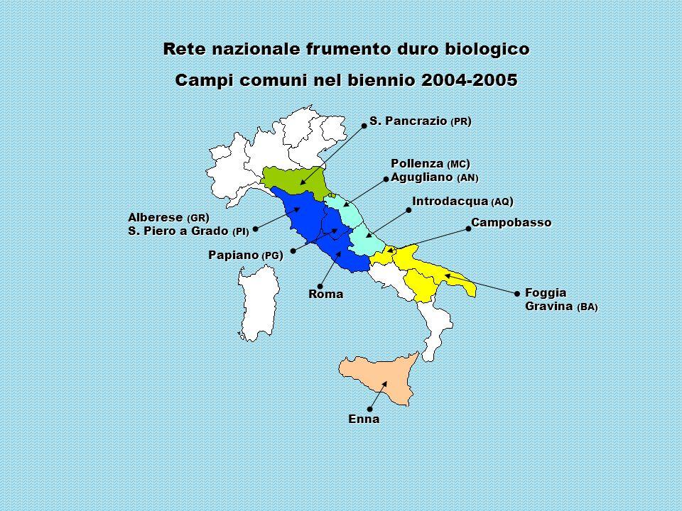 Pollenza (MC ) Agugliano (AN) Rete nazionale frumento duro biologico Campi comuni nel biennio 2004-2005 Alberese (GR ) S. Piero a Grado (PI) Roma Enna