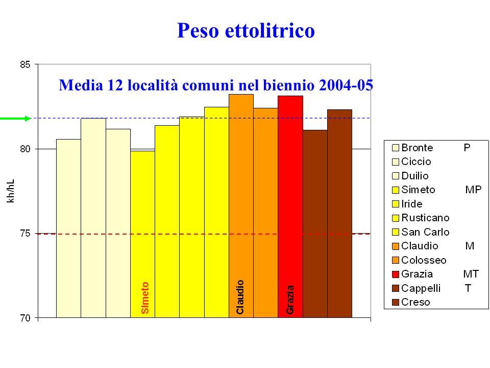 Peso ettolitrico Media 12 località comuni nel biennio 2004-05 Simeto