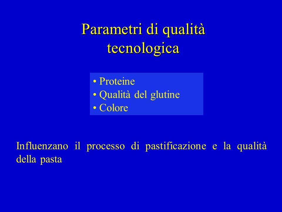 Parametri di qualità tecnologica Influenzano il processo di pastificazione e la qualità della pasta Proteine Qualità del glutine Colore