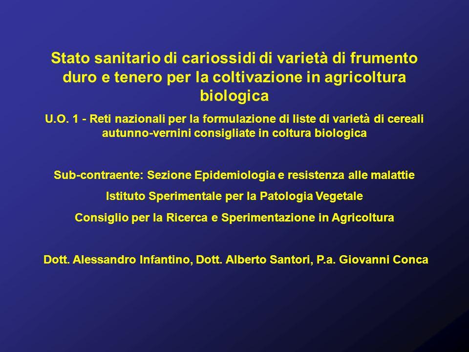 Stato sanitario di cariossidi di varietà di frumento duro e tenero per la coltivazione in agricoltura biologica U.O. 1 - Reti nazionali per la formula