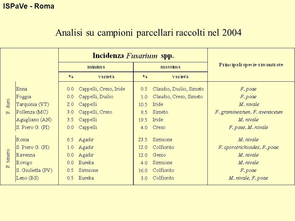 ISPaVe - Roma Analisi su campioni parcellari raccolti nel 2004