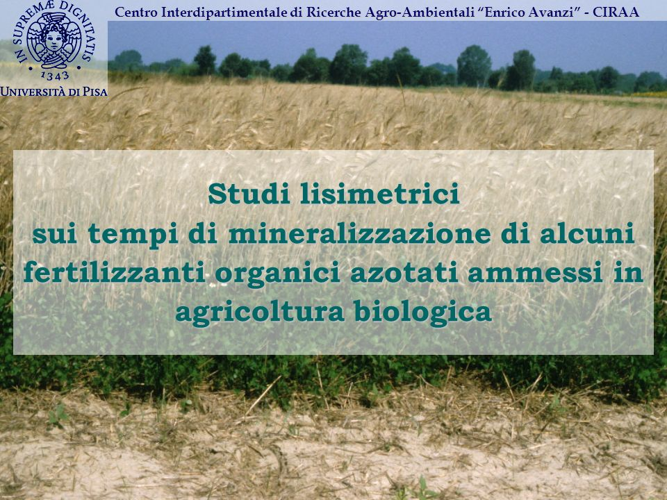 Studi lisimetrici sui tempi di mineralizzazione di alcuni fertilizzanti organici azotati ammessi in agricoltura biologica Centro Interdipartimentale d