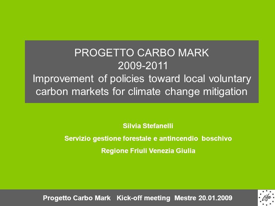 Contenuti della presentazione Overview del VCM su scala globale Crediti agro-forestali nel mercato globale Obiettivi di Carbo Mark Sfide di Carbo Mark Progetto Carbo Mark Kick-off meeting Mestre 20.01.2009