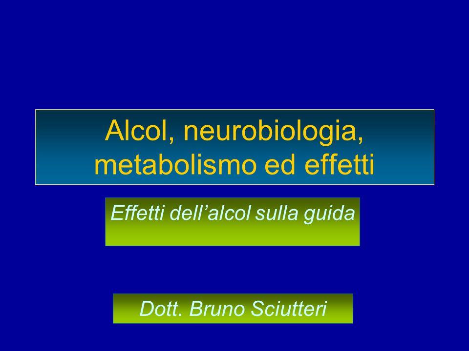 Alcol, neurobiologia, metabolismo ed effetti Effetti dellalcol sulla guida Dott. Bruno Sciutteri