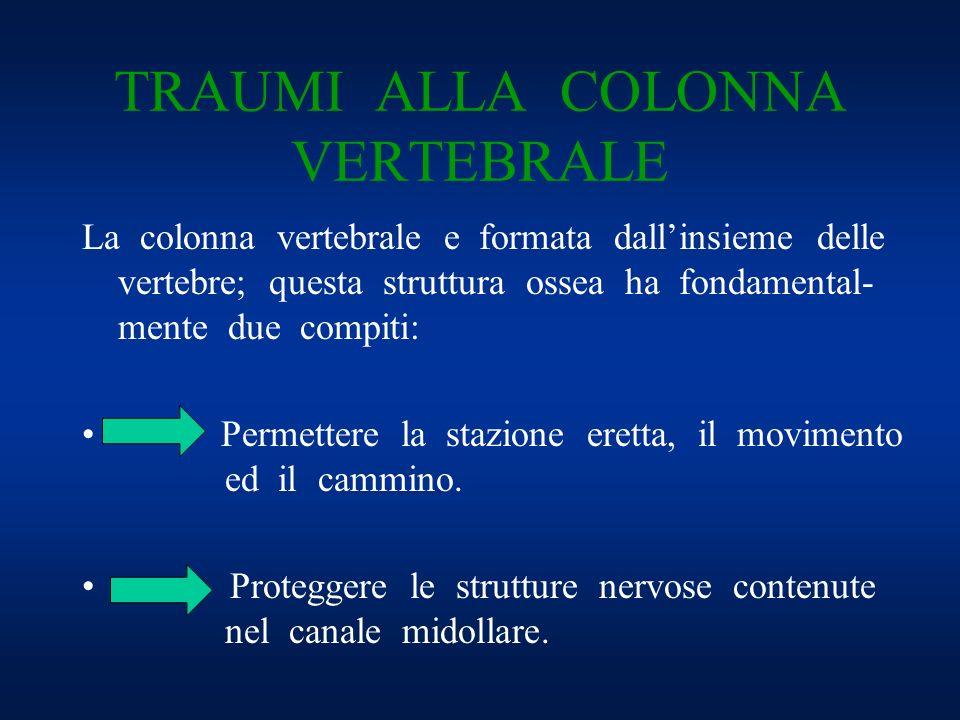 TRAUMI ALLA COLONNA VERTEBRALE La colonna vertebrale e formata dallinsieme delle vertebre; questa struttura ossea ha fondamental- mente due compiti: P