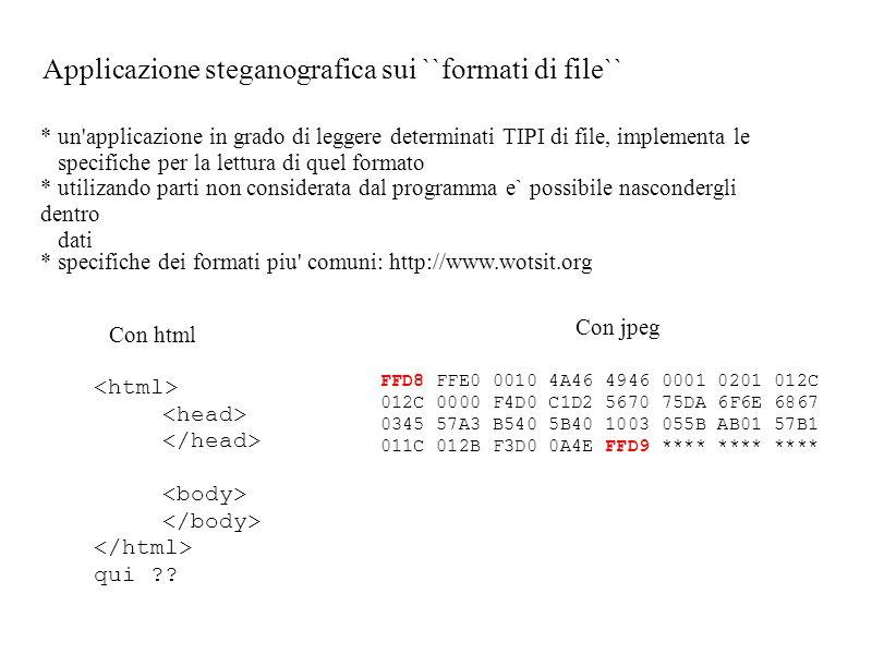 * un applicazione in grado di leggere determinati TIPI di file, implementa le specifiche per la lettura di quel formato * utilizando parti non considerata dal programma e` possibile nascondergli dentro dati qui ?.
