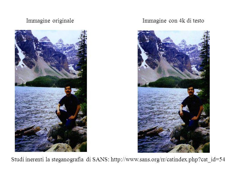 Immagine originale Immagine con 4k di testo Studi inerenti la steganografia di SANS: http://www.sans.org/rr/catindex.php?cat_id=54