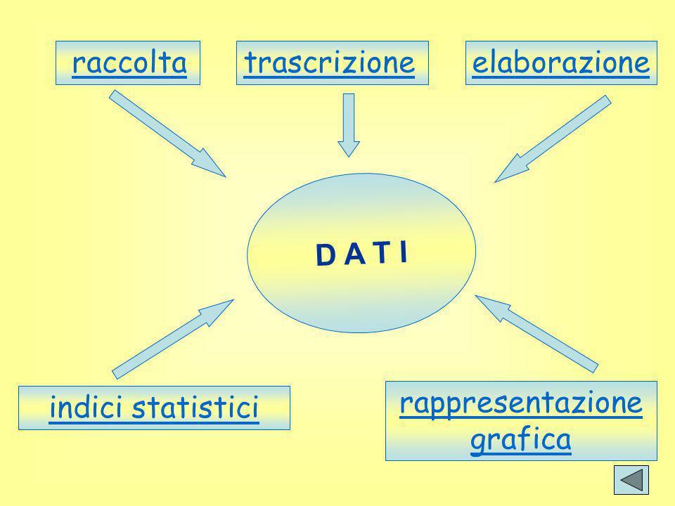raccolta D A T I elaborazione rappresentazione grafica trascrizione indici statistici