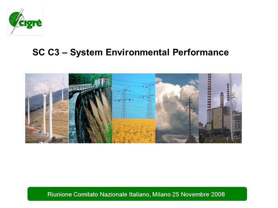 1 Riunione Comitato Nazionale Italiano, Milano 25 Novembre 2008 SC C3 – System Environmental Performance