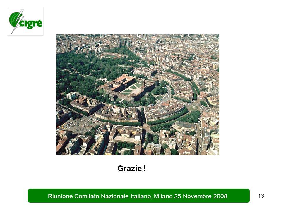 13 Riunione Comitato Nazionale Italiano, Milano 25 Novembre 2008 Grazie !