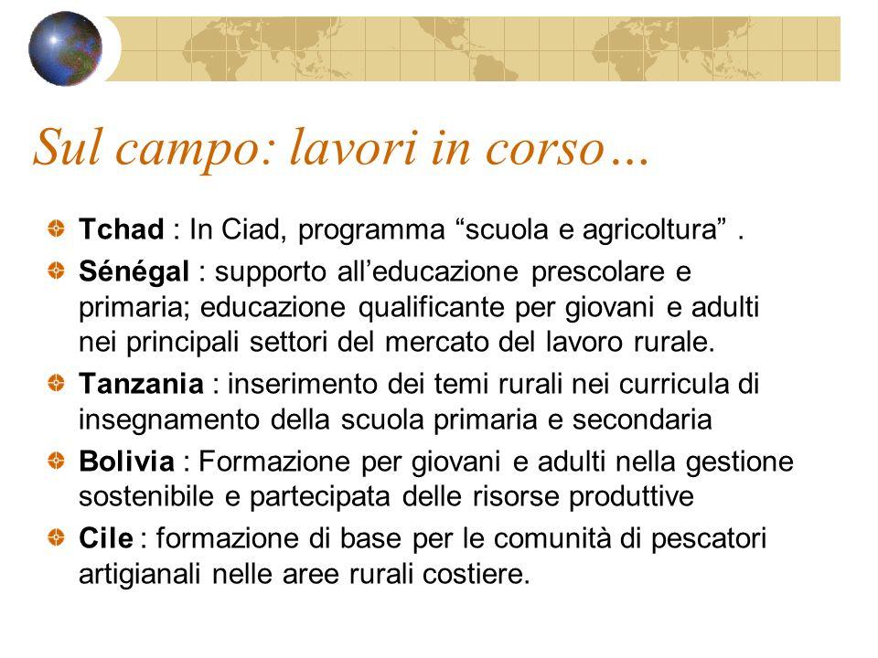 Sul campo: lavori in corso… Tchad : In Ciad, programma scuola e agricoltura.