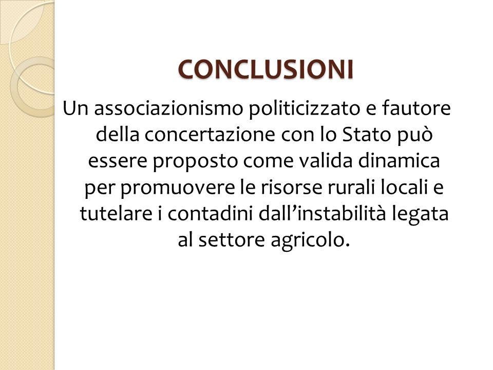 CONCLUSIONI Un associazionismo politicizzato e fautore della concertazione con lo Stato può essere proposto come valida dinamica per promuovere le ris