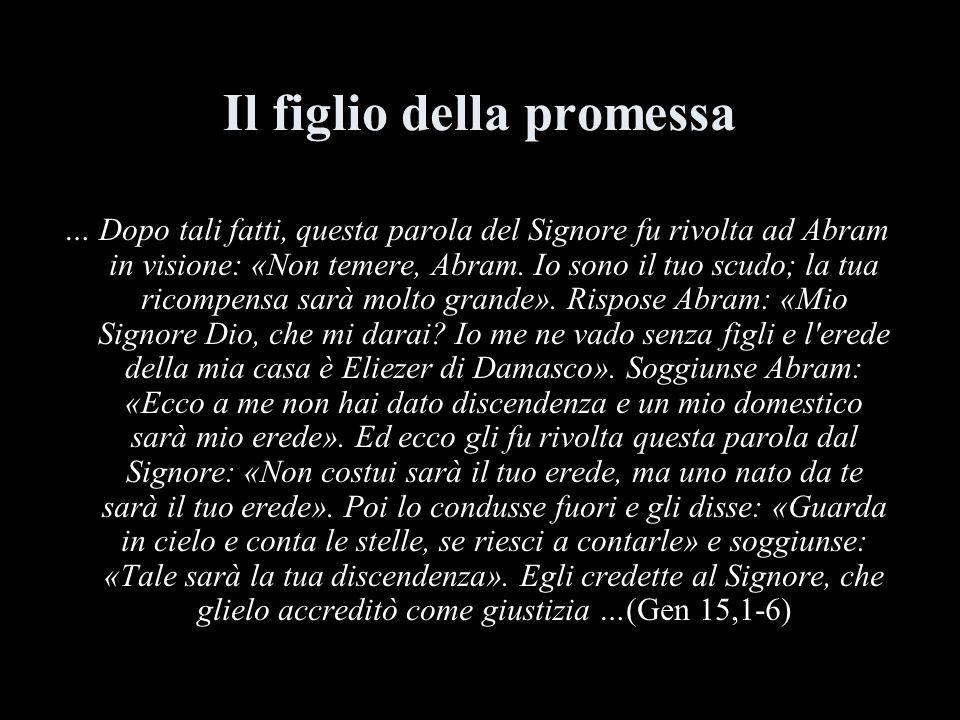 Il figlio della promessa … Dopo tali fatti, questa parola del Signore fu rivolta ad Abram in visione: «Non temere, Abram. Io sono il tuo scudo; la tua