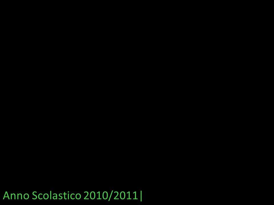 Anno Scolastico 2010/2011|