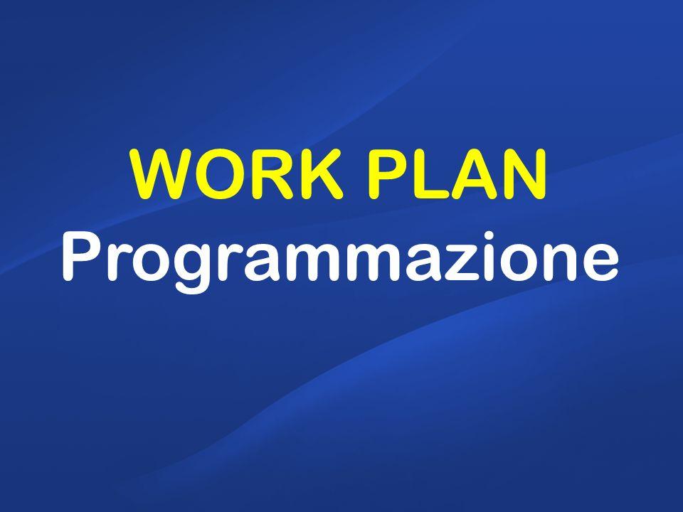 WORK PLAN Programmazione