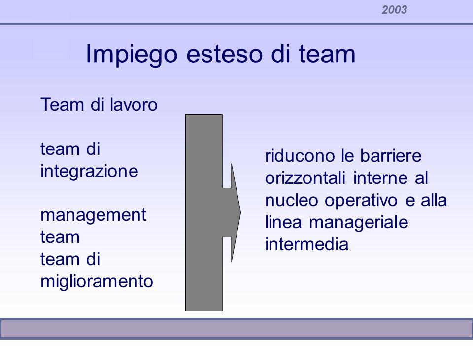 2003 riducono le barriere orizzontali interne al nucleo operativo e alla linea manageriale intermedia Team di lavoro team di integrazione management t