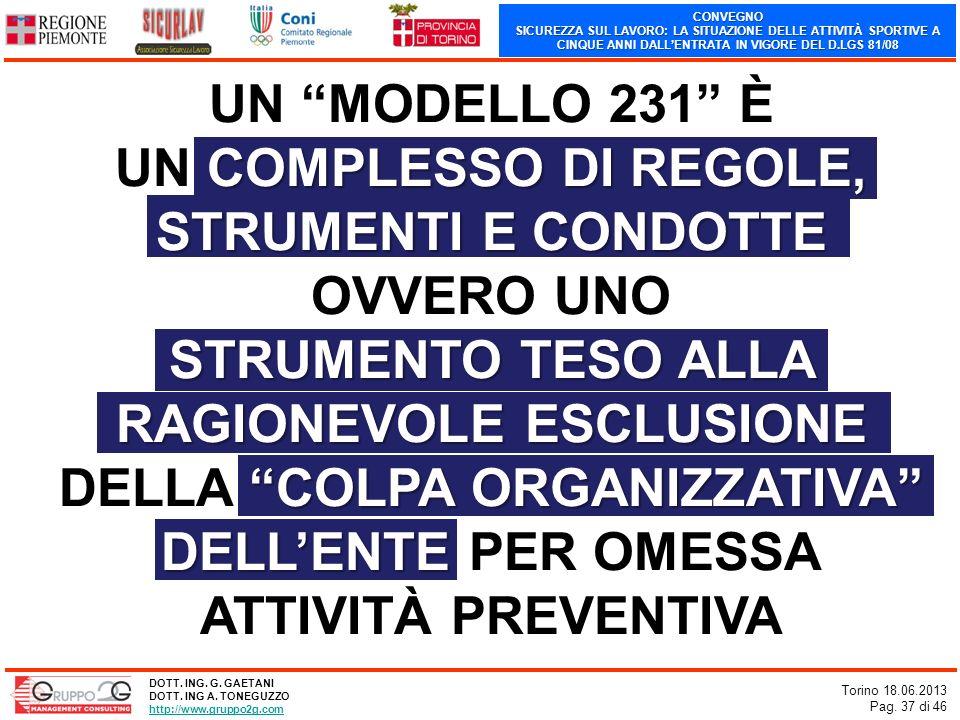 CONVEGNO SICUREZZA SUL LAVORO: LA SITUAZIONE DELLE ATTIVITÀ SPORTIVE A CINQUE ANNI DALLENTRATA IN VIGORE DEL D.LGS 81/08 Torino 18.06.2013 Pag. 37 di