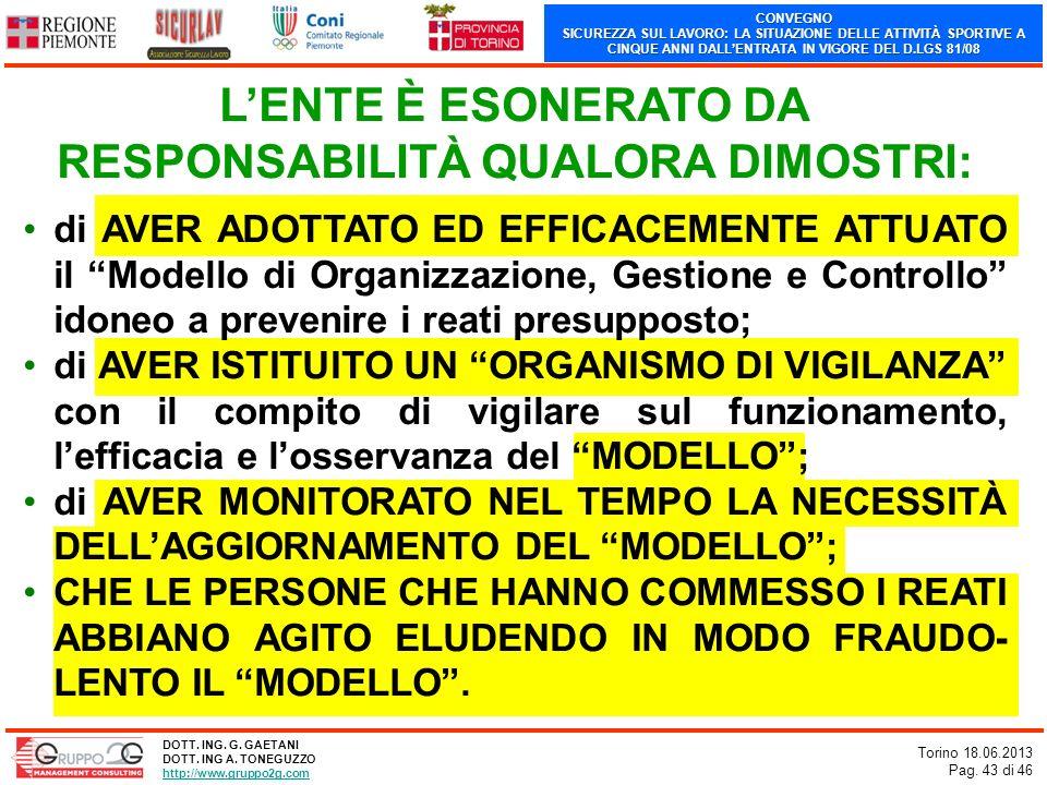 CONVEGNO SICUREZZA SUL LAVORO: LA SITUAZIONE DELLE ATTIVITÀ SPORTIVE A CINQUE ANNI DALLENTRATA IN VIGORE DEL D.LGS 81/08 Torino 18.06.2013 Pag. 43 di