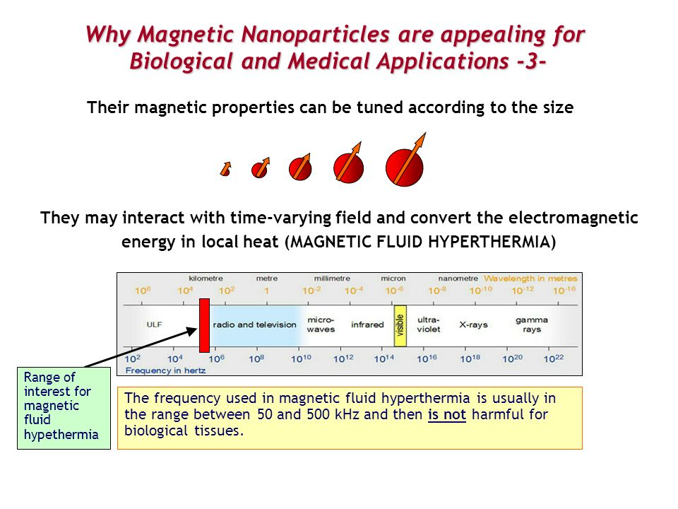 Why Magnetic Nanoparticles are appealing for Biological and Medical Applications -3- Their magnetic properties can be tuned according to the size They
