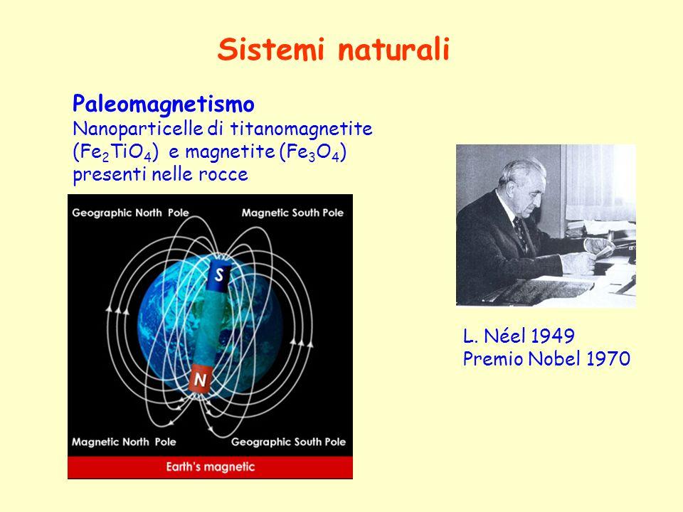 Sistemi naturali Paleomagnetismo Nanoparticelle di titanomagnetite (Fe 2 TiO 4 ) e magnetite (Fe 3 O 4 ) presenti nelle rocce L. Néel 1949 Premio Nobe