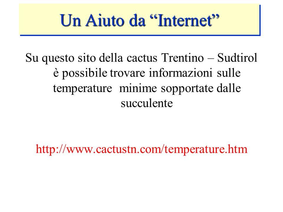 Su questo sito della cactus Trentino – Sudtirol è possibile trovare informazioni sulle temperature minime sopportate dalle succulente http://www.cactu