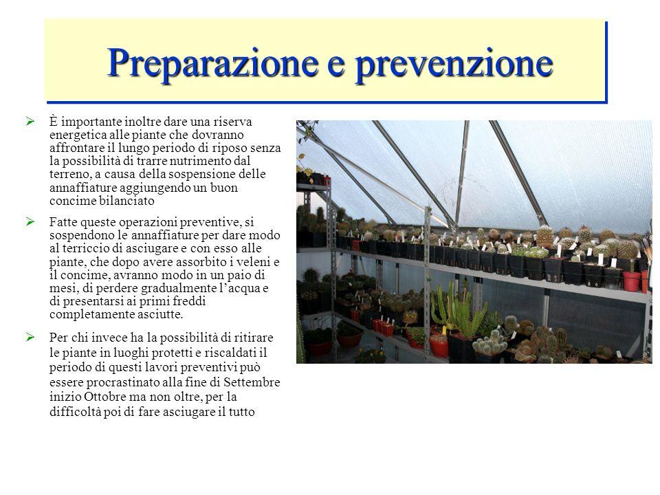 Preparazione e prevenzione Preparazione e prevenzione È importante inoltre dare una riserva energetica alle piante che dovranno affrontare il lungo pe