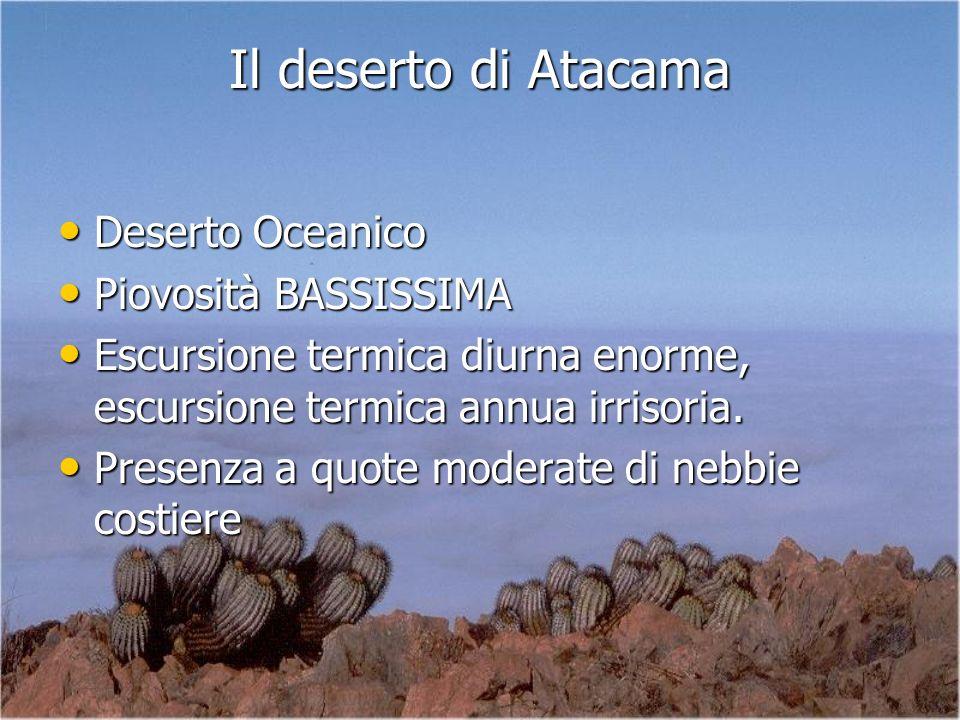 Deserto Oceanico Deserto Oceanico Piovosità BASSISSIMA Piovosità BASSISSIMA Escursione termica diurna enorme, escursione termica annua irrisoria. Escu