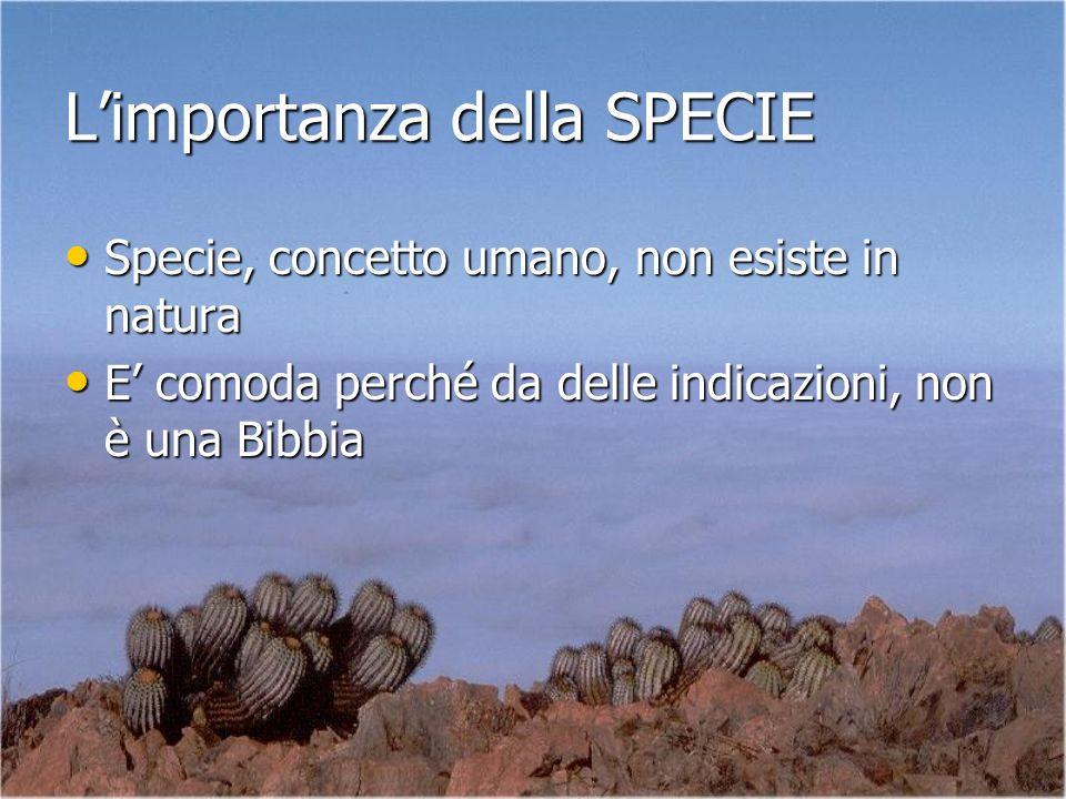 Limportanza della SPECIE Specie, concetto umano, non esiste in natura Specie, concetto umano, non esiste in natura E comoda perché da delle indicazion