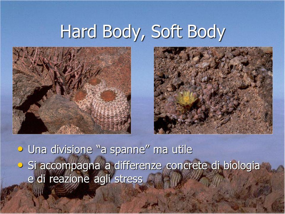Hard Body, Soft Body Una divisione a spanne ma utile Una divisione a spanne ma utile Si accompagna a differenze concrete di biologia e di reazione agl
