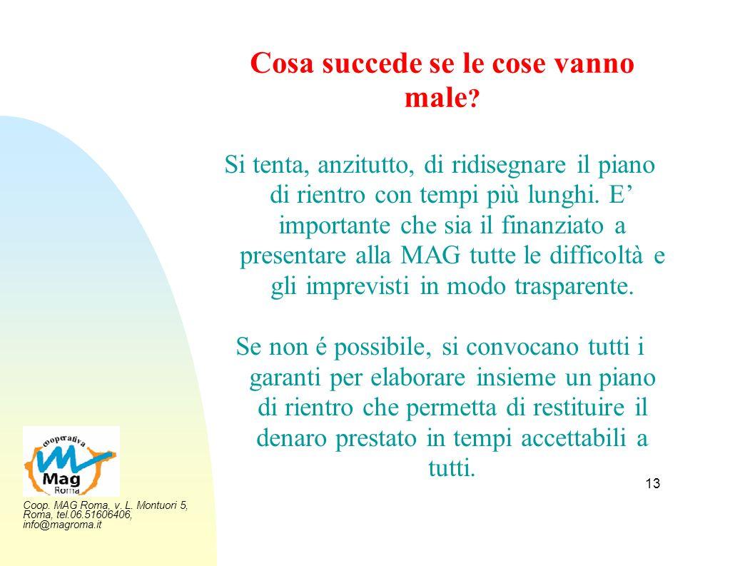 Coop. MAG Roma, v. L. Montuori 5, Roma, tel.06.51606406, info@magroma.it 13 Cosa succede se le cose vanno male ? Si tenta, anzitutto, di ridisegnare i
