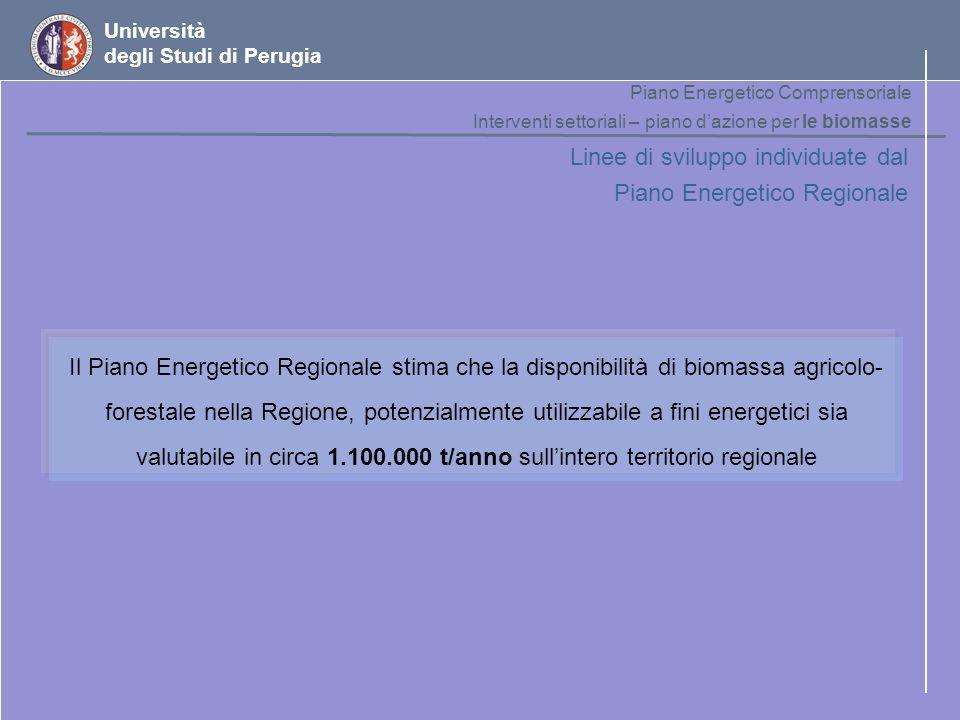 Università degli Studi di Perugia Linee di sviluppo individuate dal Piano Energetico Regionale Il Piano Energetico Regionale stima che la disponibilit