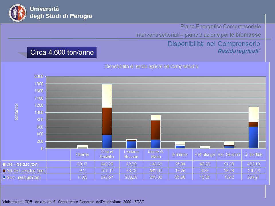 Università degli Studi di Perugia Disponibilità nel Comprensorio Residui agricoli* *elaborazioni CRB, da dati del 5° Censimento Generale dellAgricoltu
