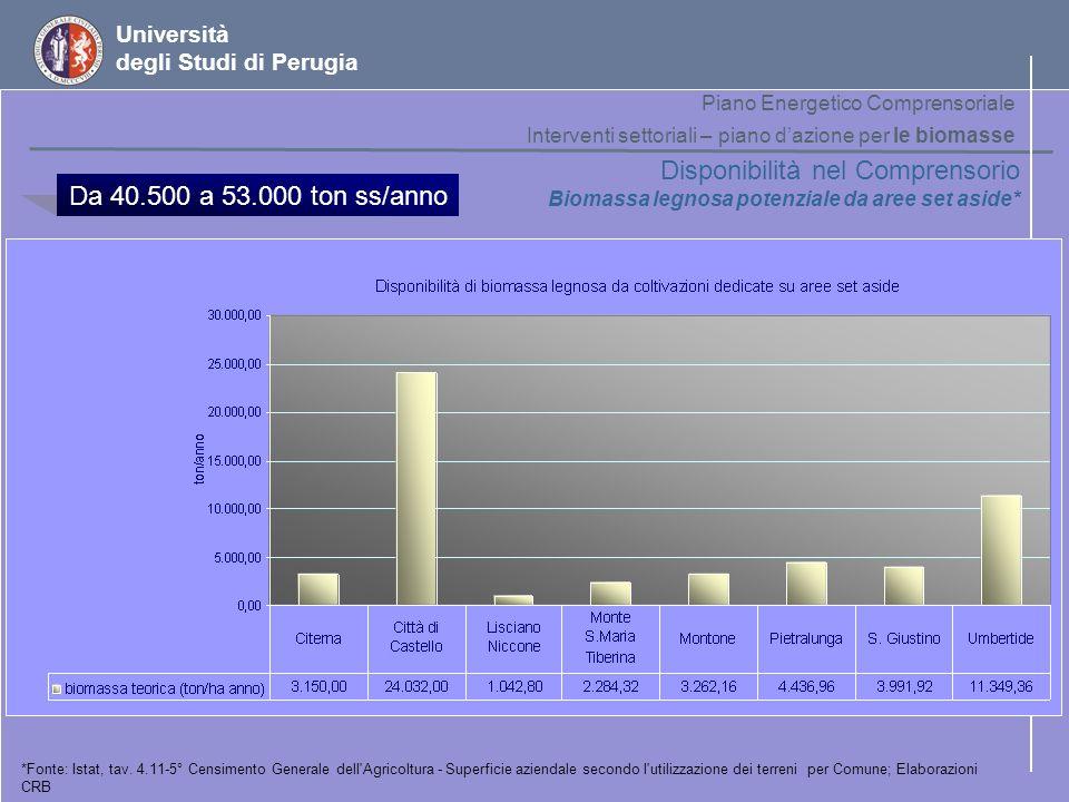 Università degli Studi di Perugia Disponibilità nel Comprensorio Biomassa legnosa potenziale da aree set aside* *Fonte: Istat, tav. 4.11-5° Censimento