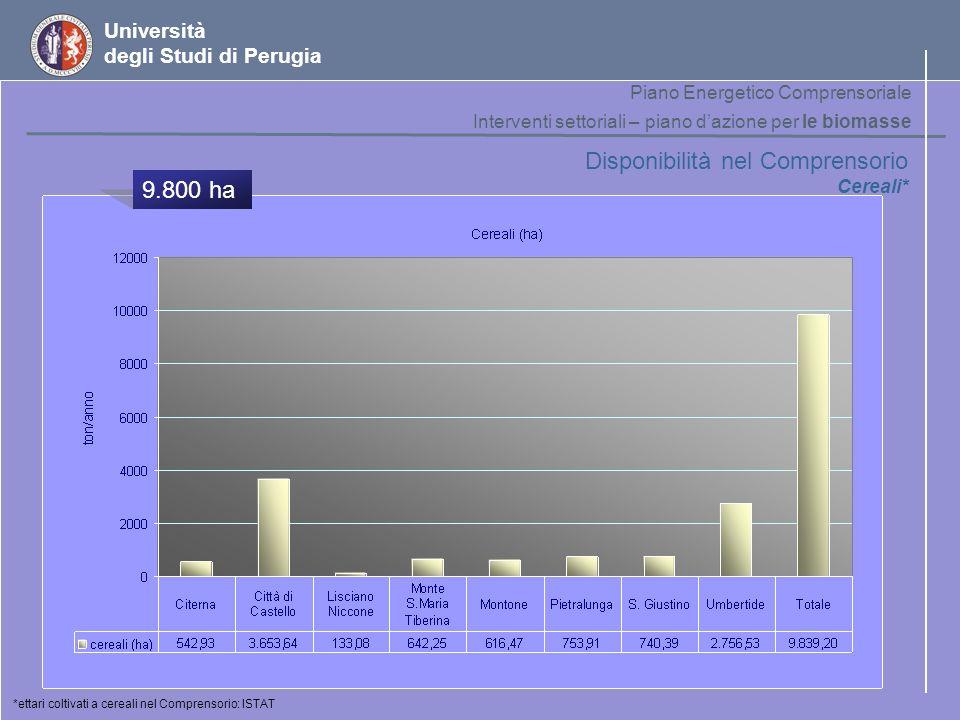 Università degli Studi di Perugia Disponibilità nel Comprensorio Cereali* *ettari coltivati a cereali nel Comprensorio: ISTAT Piano Energetico Compren