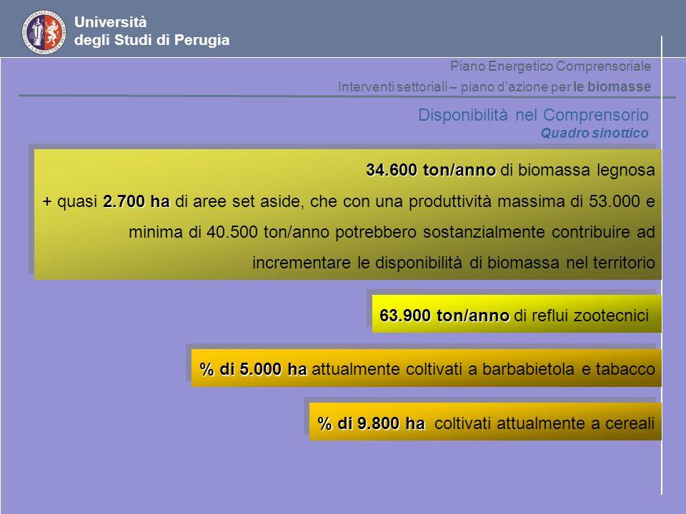 Università degli Studi di Perugia Disponibilità nel Comprensorio Quadro sinottico 34.600 ton/anno 34.600 ton/anno di biomassa legnosa 2.700 ha + quasi