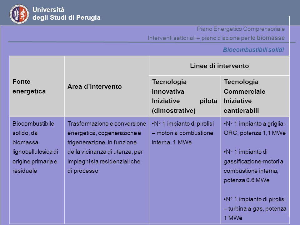 Università degli Studi di Perugia Biocombustibili solidi Fonte energetica Area dintervento Linee di intervento Tecnologia innovativa Iniziative pilota