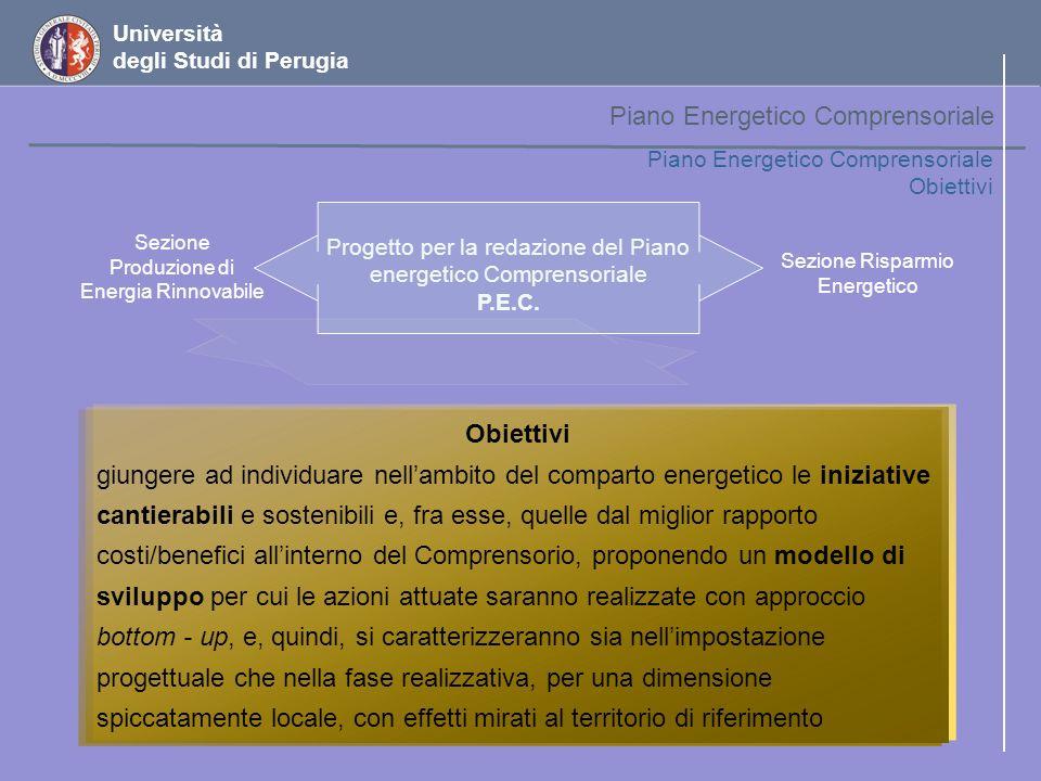 Università degli Studi di Perugia Disponibilità nel Comprensorio Quadro sinottico 34.600 ton/anno 34.600 ton/anno di biomassa legnosa 2.700 ha + quasi 2.700 ha di aree set aside, che con una produttività massima di 53.000 e minima di 40.500 ton/anno potrebbero sostanzialmente contribuire ad incrementare le disponibilità di biomassa nel territorio 34.600 ton/anno 34.600 ton/anno di biomassa legnosa 2.700 ha + quasi 2.700 ha di aree set aside, che con una produttività massima di 53.000 e minima di 40.500 ton/anno potrebbero sostanzialmente contribuire ad incrementare le disponibilità di biomassa nel territorio 63.900 ton/anno 63.900 ton/anno di reflui zootecnici % di 5.000 ha % di 5.000 ha attualmente coltivati a barbabietola e tabacco % di 9.800 ha % di 9.800 ha coltivati attualmente a cereali Piano Energetico Comprensoriale Interventi settoriali – piano dazione per le biomasse