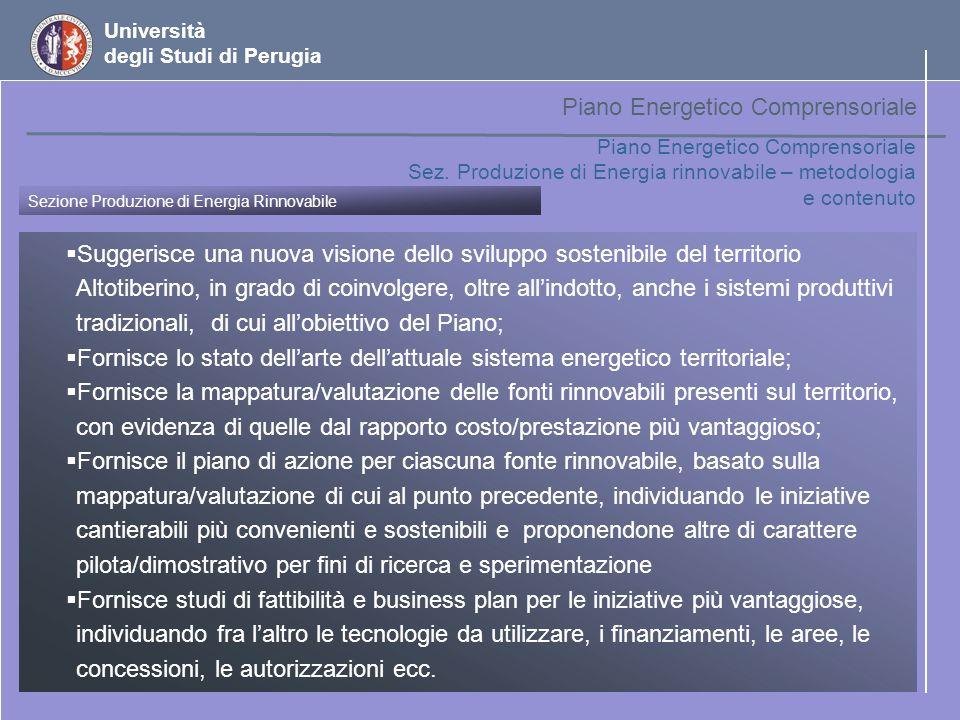Università degli Studi di Perugia Indirizzi (1) tecnologie commercialmente disponibili per capacità medio/piccole con efficienza adeguata; (2) è possibile alimentare limpianto con biomasse di produzione locale, entro un raggio ristretto a poche centinaia di ettari; (3) gli iter procedurali per il conseguimento delle autorizzazioni alla costruzione e lesercizio di impianti di piccola taglia è favorito e semplificato nella legislazione attuale; (4) fino a questa taglia è relativamente facile disporre di utenze per lenergia termica ottenuta a valle del generatore, aumentando la resa economica dellimpianto; (5) linvestimento finanziario è di dimensioni limitate, il che favorisce la creazione di Consorzi pubblico/privato dove i vari attori locali sono rappresentati; (6) quando ulteriori risorse di biomassa si rendono disponibili, uneventuale espansione dellimpianto o la sua replica in zone limitrofe può essere facilmente realizzata.
