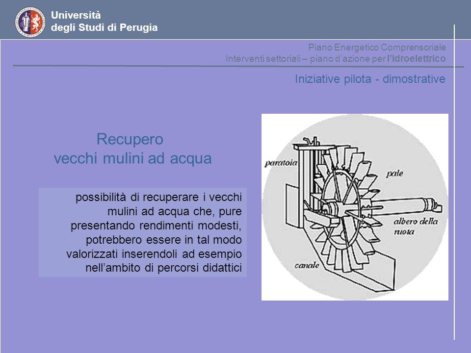 Università degli Studi di Perugia Iniziative pilota - dimostrative Recupero vecchi mulini ad acqua possibilità di recuperare i vecchi mulini ad acqua