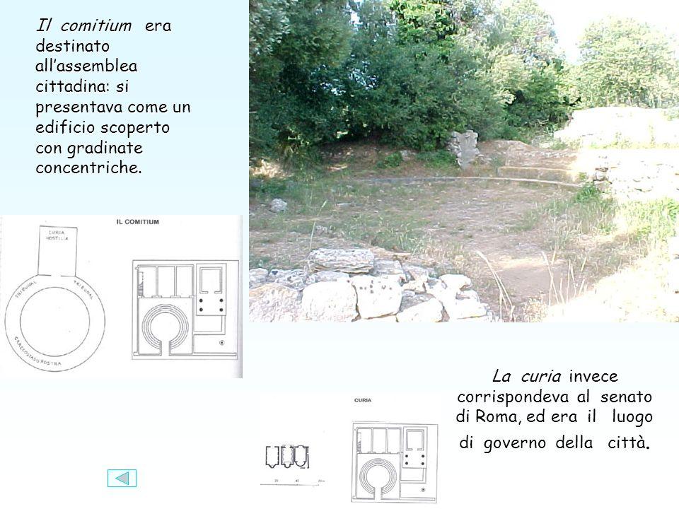 Il comitium era destinato allassemblea cittadina: si presentava come un edificio scoperto con gradinate concentriche.