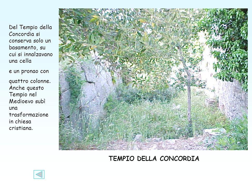TEMPIO DELLA CONCORDIA Del Tempio della Concordia si conserva solo un basamento, su cui si innalzavano una cella e un pronao con quattro colonne.