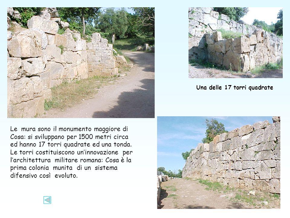 Le mura sono il monumento maggiore di Cosa: si sviluppano per 1500 metri circa ed hanno 17 torri quadrate ed una tonda.