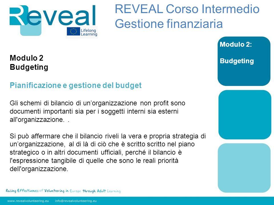 Modulo 2: Budgeting Modulo 2 Budgeting Pianificazione e gestione del budget Gli schemi di bilancio di unorganizzazione non profit sono documenti importanti sia per i soggetti interni sia esterni all organizzazione..