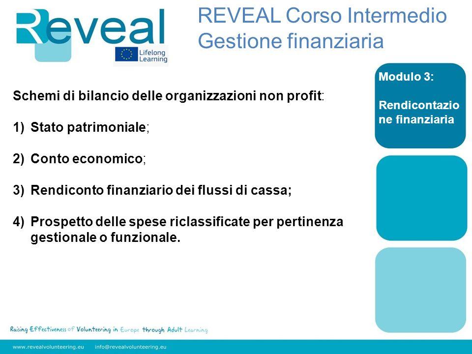 Modulo 3: Rendicontazio ne finanziaria Schemi di bilancio delle organizzazioni non profit: 1)Stato patrimoniale; 2)Conto economico; 3)Rendiconto finan
