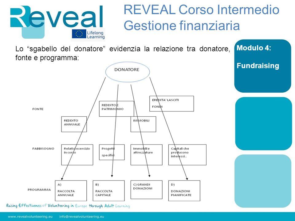 Modulo 4: Fundraising REVEAL Corso Intermedio Gestione finanziaria Lo sgabello del donatore evidenzia la relazione tra donatore, fonte e programma: