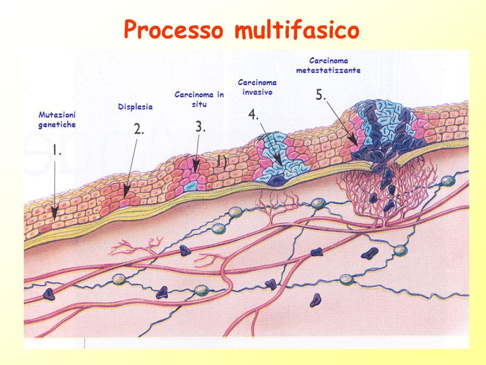 MUTAZIONI PRIMARIE: importanti per linsorgenza di un tumore MUTAZIONI SECONDARIE: importanti per la progressione tumorale